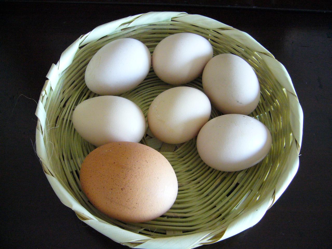Dieta sin gluten: alimentos para corregir deficiencias