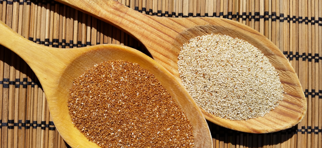 Teff: un cereal sin gluten muy saludable