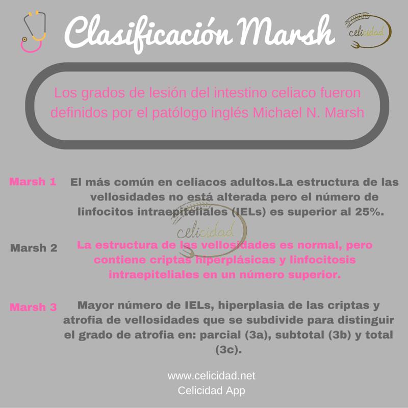 Clasificación Marsh