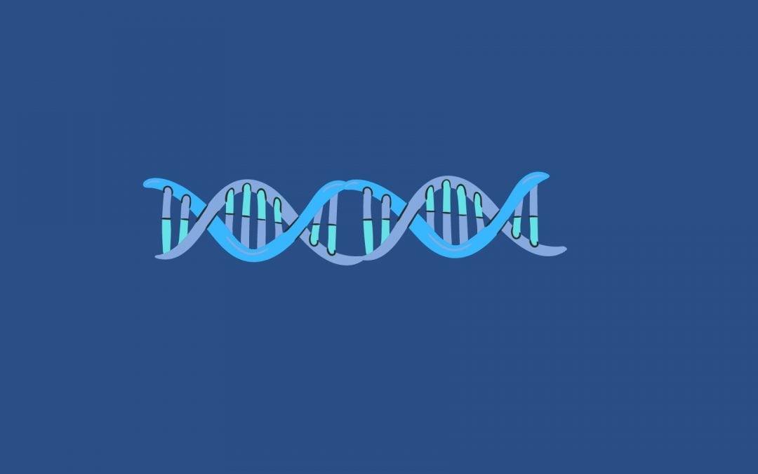 prueba genetica celiaquia
