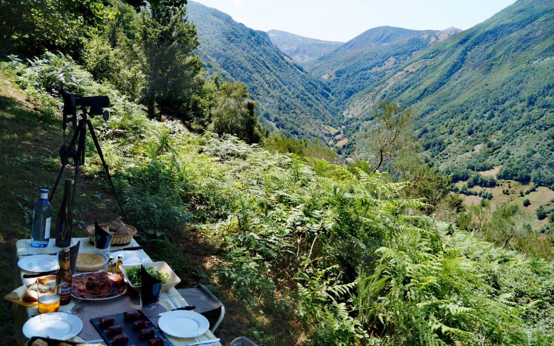 Bosque Activo: actividades de naturaleza y picnic sin gluten en Cangas del Narcea
